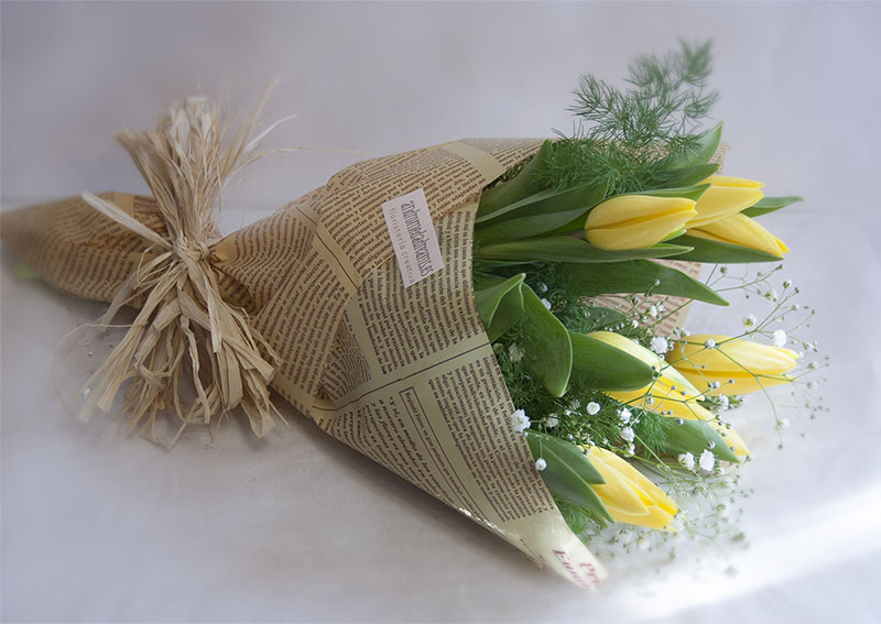 Regalar TULIPANES