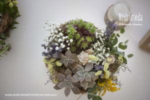 composiciones con plantas