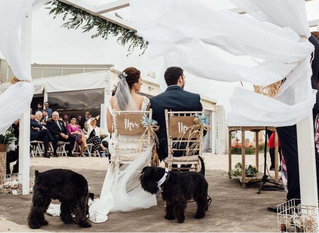 boda en la playa del saler