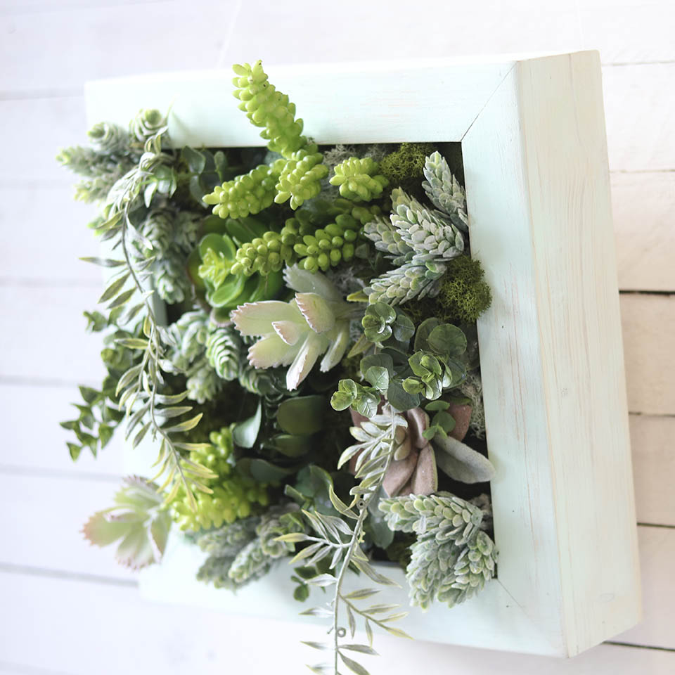 Cuadros de plantas dejardin vertical sin mantenimiento