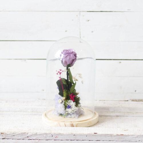 rosa malva en cupula cristal