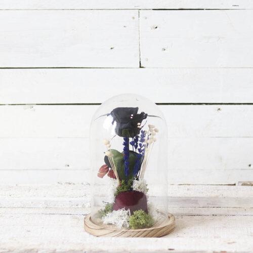 rosa negra en cupula cristal