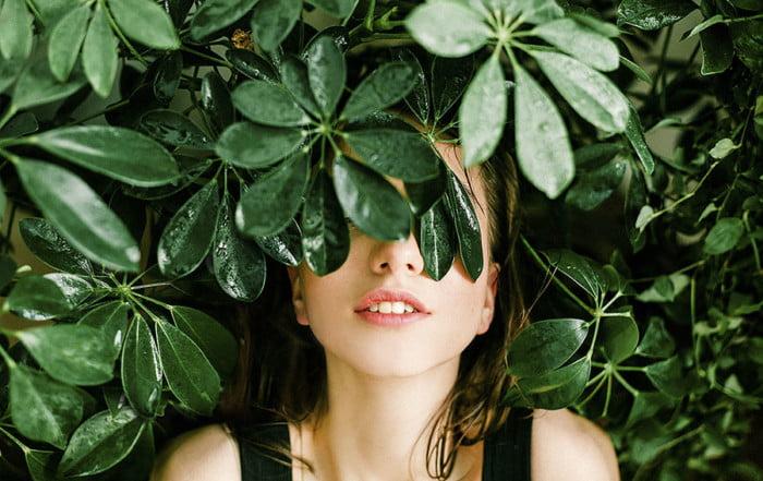 plantas antiestrés
